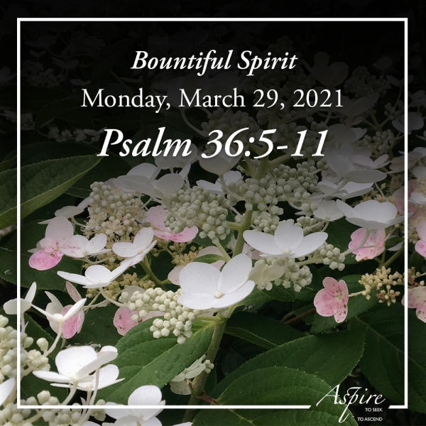 Bountiful Spirit - March 29, 2021