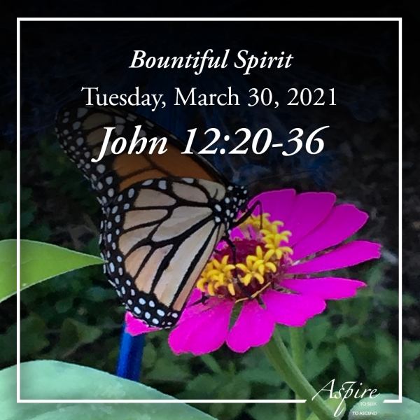 Bountiful Spirit - March 30, 2021