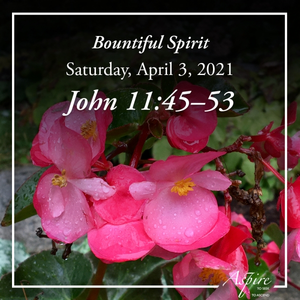 Bountiful Spirit -April 3, 2021